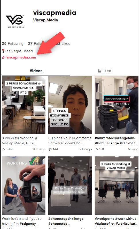 Content Ideas to Advertise on TikTok Viscap Media Profile