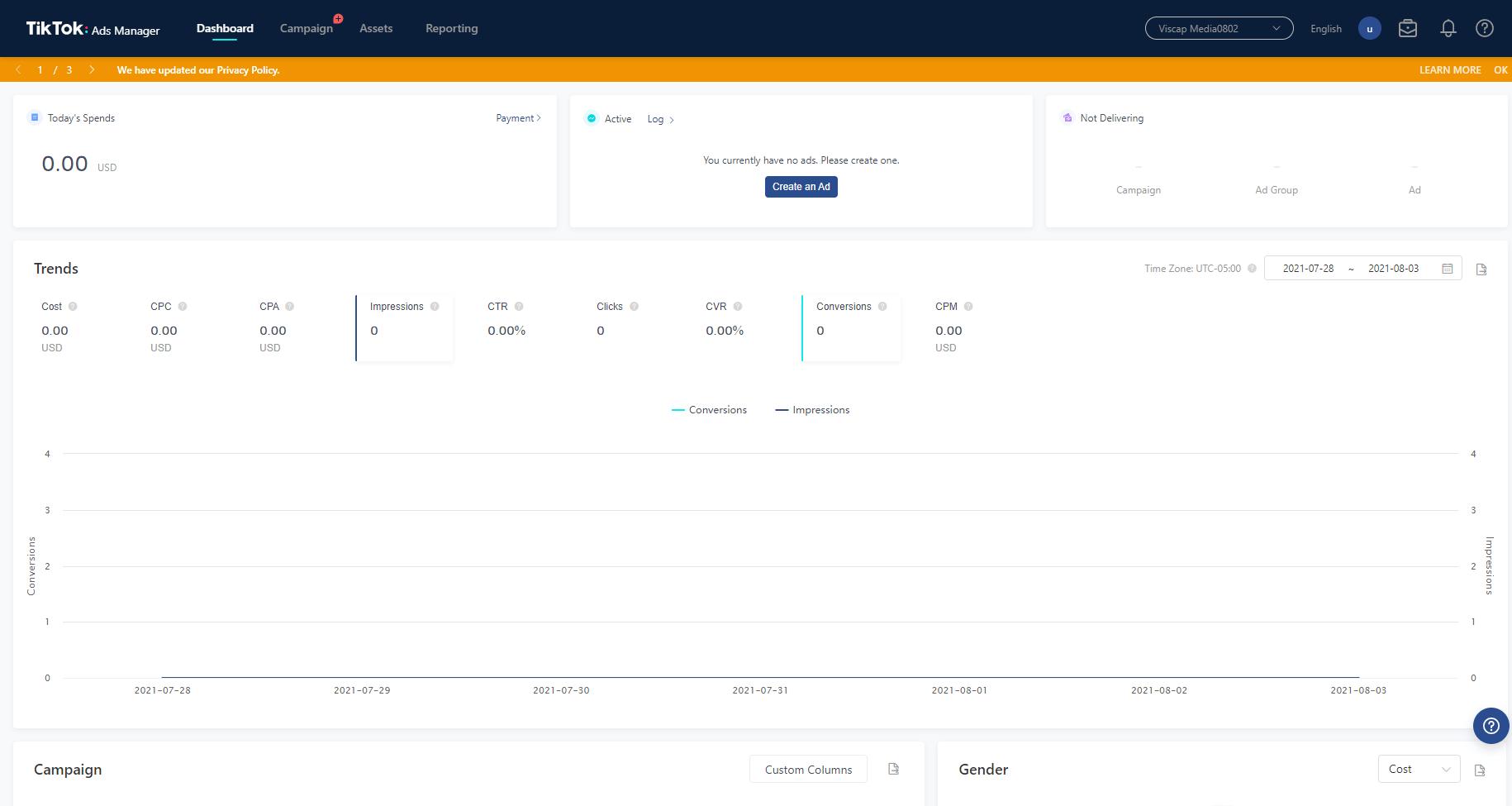 Advertise on TikTok Campaign Dashboard Screenshot